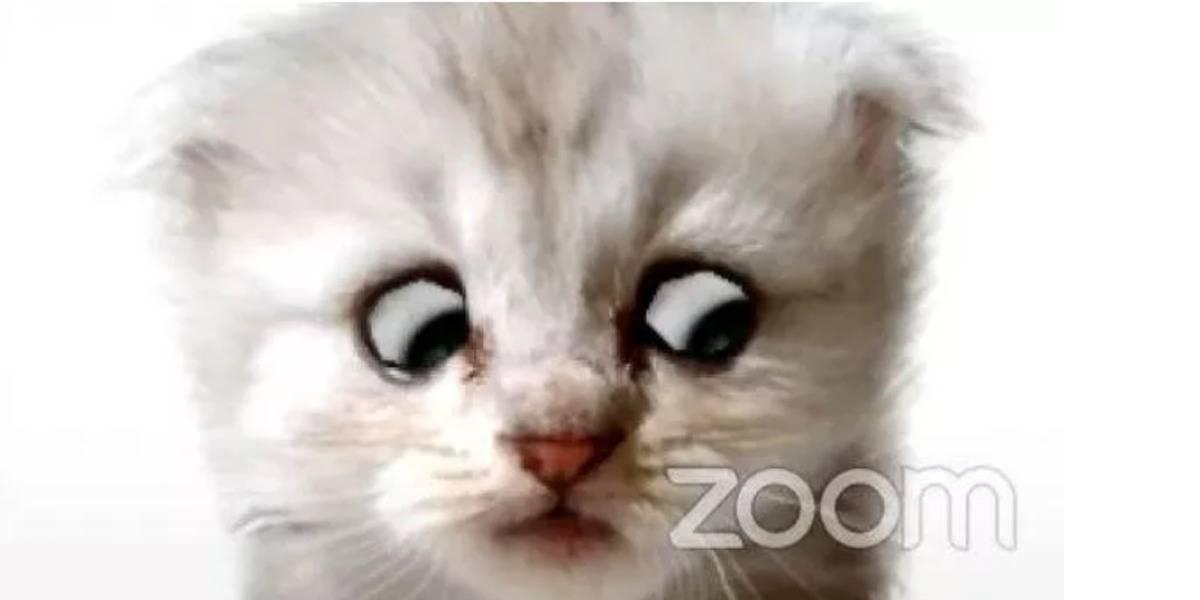Zoom: así puedes usar el filtro de gatito que se hizo viral para videoconferencias