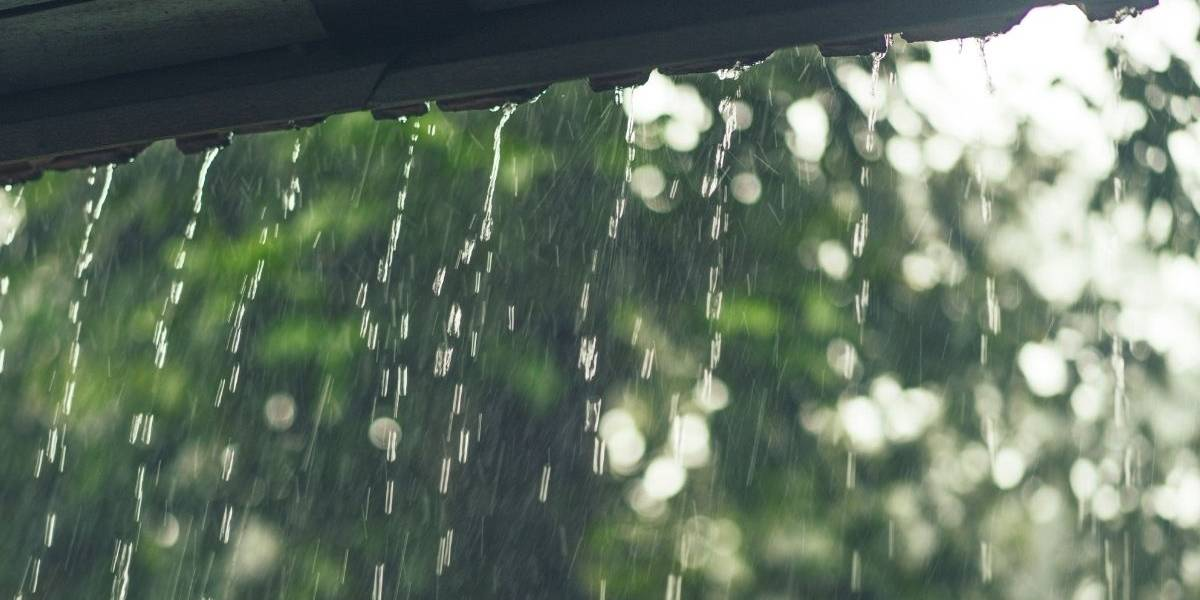 Sexta-feira será quente e chuvosa na capital de São Paulo