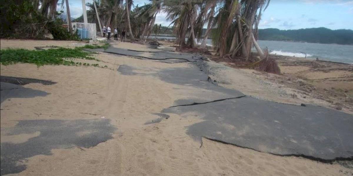 Investigación concluye que continúa debilitamiento de las zonas costeras de Puerto Rico