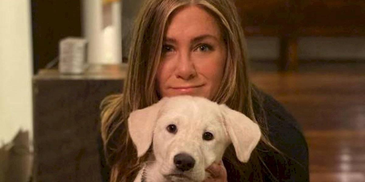 A los 52 años, Jennifer Aniston está en su mejor momento