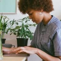 5 plantas que precisam de pouca luz para ter no home office
