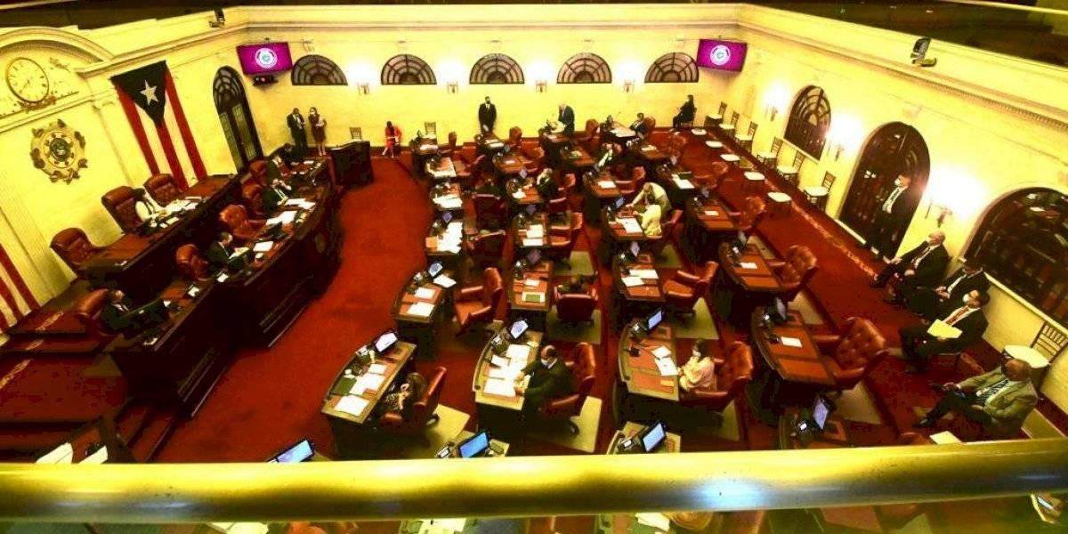 Senado acudirá al tribunal por nombramiento interino en Educación