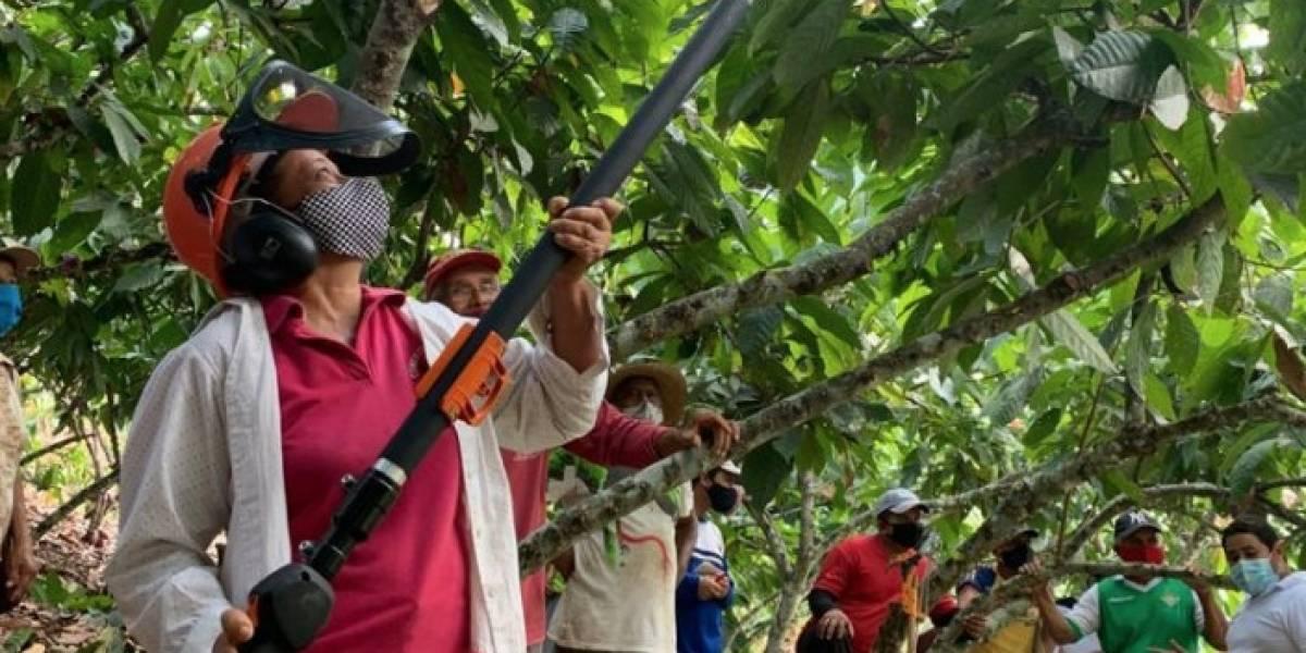 Nestlé capacitó a más de 600 cacaoteros a nivel nacional con la escuela de agro emprendimiento