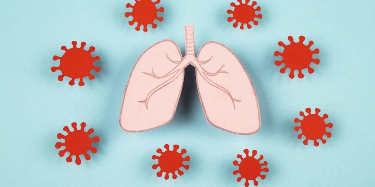Covid-19: paciente morre após receber transplante de pulmões infectados com a doença