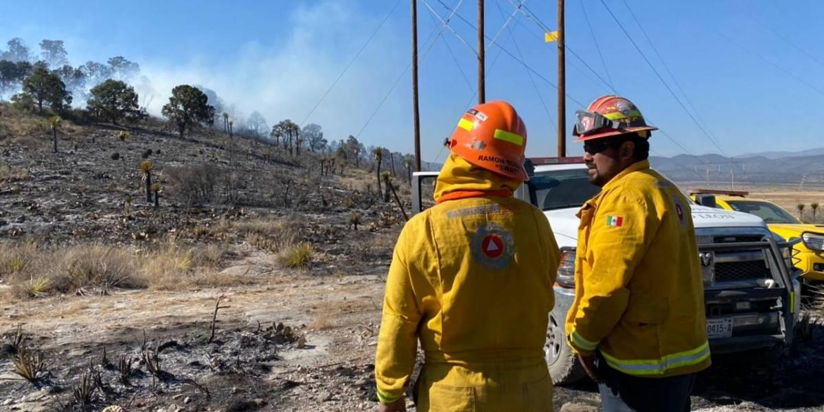 Sofoca PCNL cinco incendios forestales; suma Nuevo León 11 en 2021