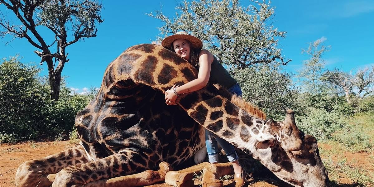 Repudian en redes a mujer que asesinó a una jirafa y posó con su corazón