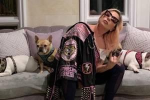 https://www.metrojornal.com.br/entretenimento/2021/02/25/lady-gaga-oferece-recompensa-milionaria-por-seus-caes-roubados.html
