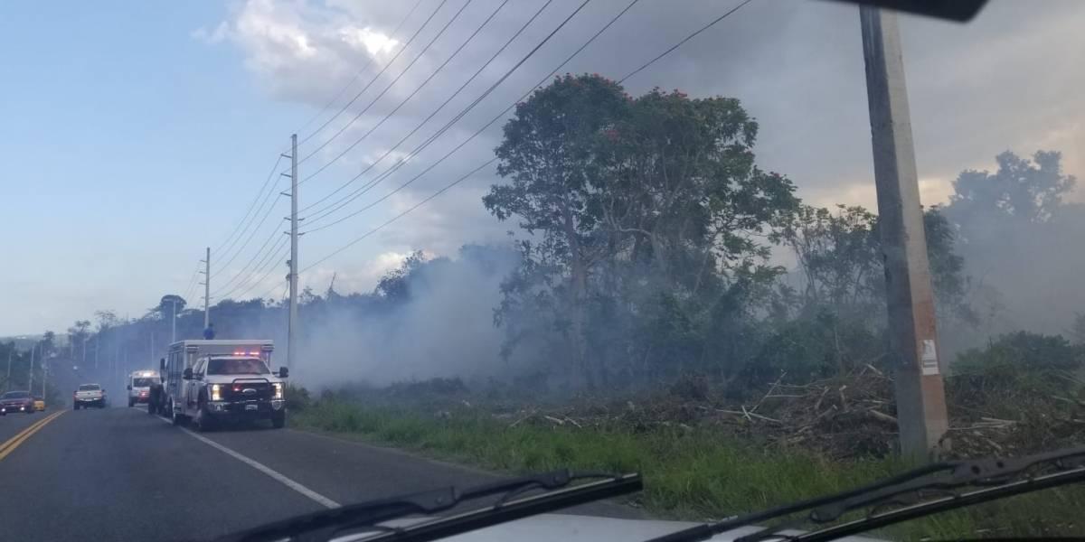 Autoridades atienden fuego forestal en San Sebastián
