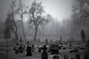 https://www.publimetro.com.mx/mx/algarabia/2021/02/26/ni-se-entere-las-muertes-solitarias.html
