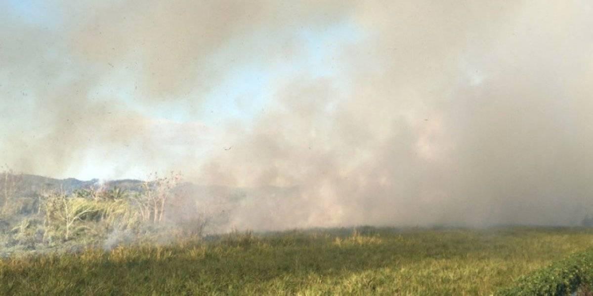Bomberos combaten fuego forestal cerca al aeropuerto de Mayagüez