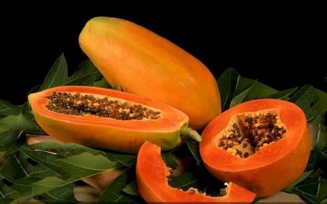 papayacaribec3b1-daaa182eebc922d3e9b1e66bf2be1e8c.jpg