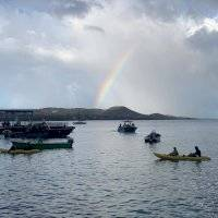 FOTOS y VIDEOS: Amanece protesta por servicios, pero ahora en Vieques
