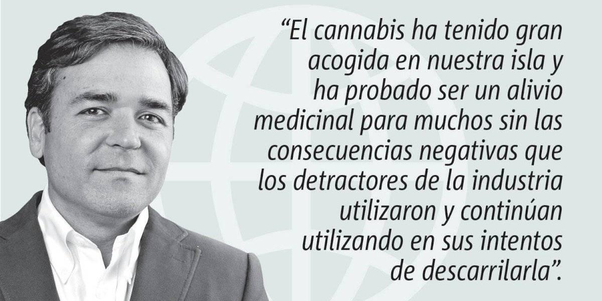 Opinión de Alejandro Figueroa: Lecciones sobre la legalización del Cannabis