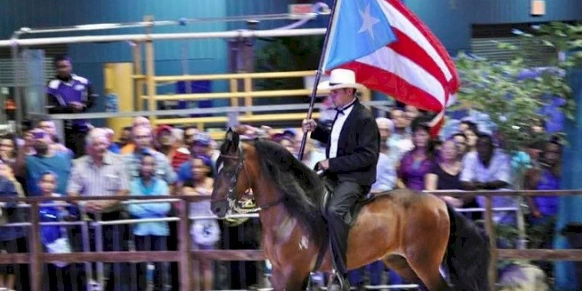 Caballistas de paso fino se reunirán este fin de semana en Aguada