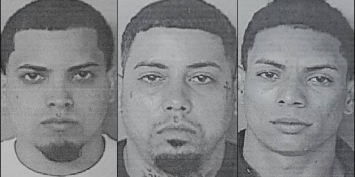 Arrestan hombres que operaban organización criminal en Mayagüez