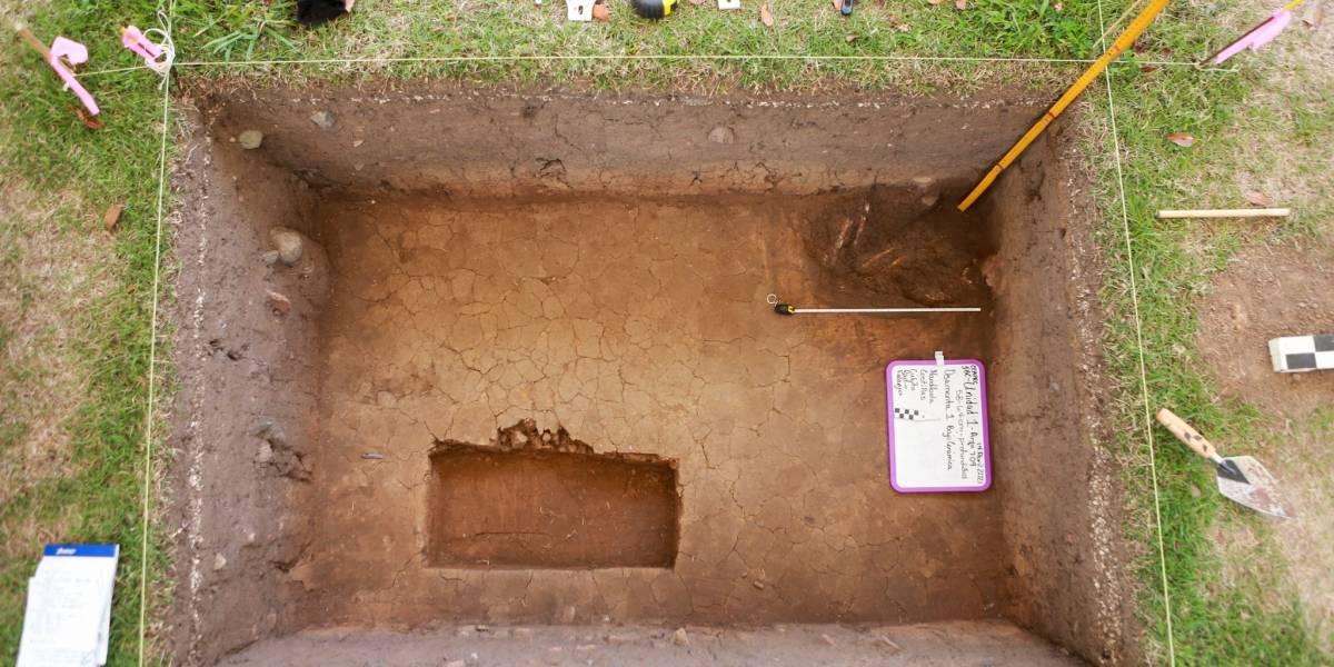 Importante hallazgo arqueológico en el Jardín Botánico de Caguas