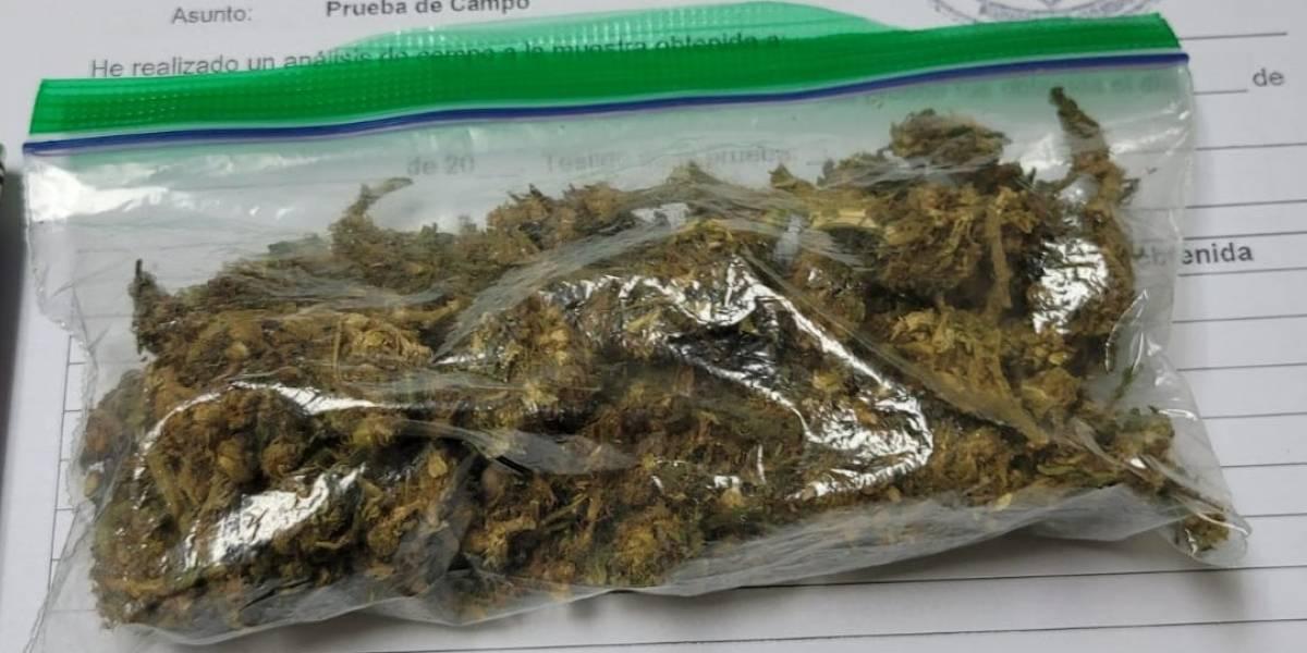 Arrestan a hombre y un menor por posesión de marihuana en Moca