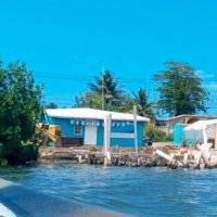 FOTOS: Denuncian remoción de mangle en Piñones con maquinaria pesada