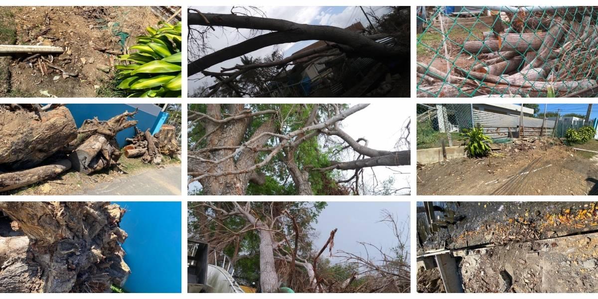 "Dueño de casa señalada en Loíza: ""Acá no hay remoción de mangle, son denuncias irresponsables"""