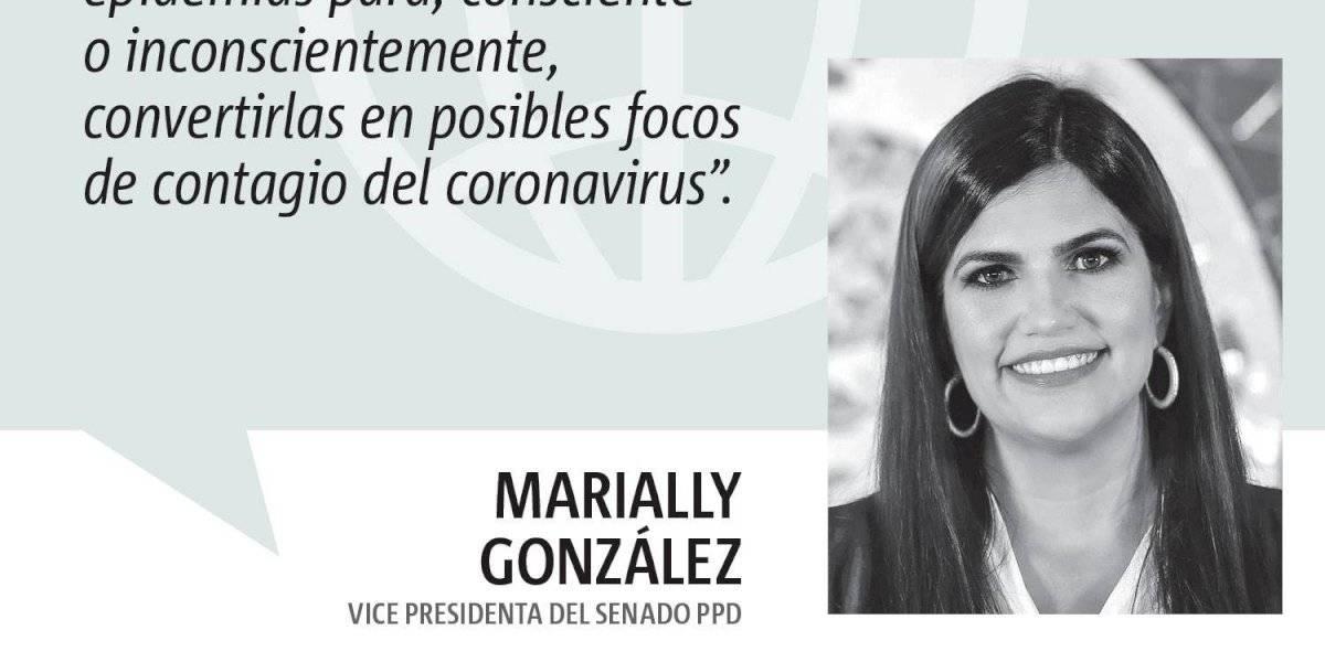 Opinión de Marially González: COVID-19 y escuela pública