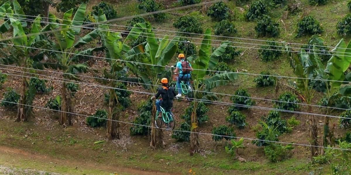 Toroverde inaugura atracción: el circuito de bicicleta en cable más largo del mundo