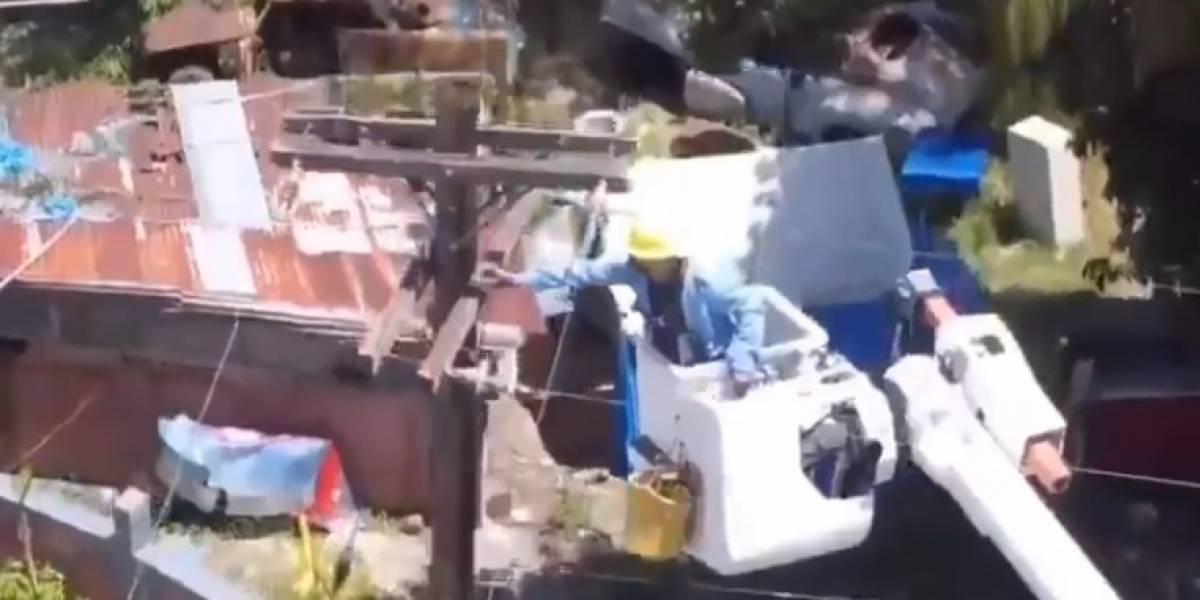 Rescatan a gatito que estaba en poste de luz en Toa Alta