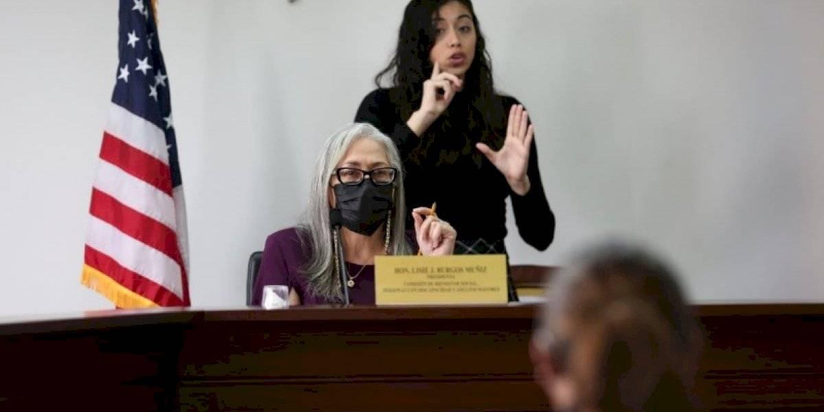 Portavoz de Proyecto Dignidad pide a la Cámara atiendan medida sobre violencia