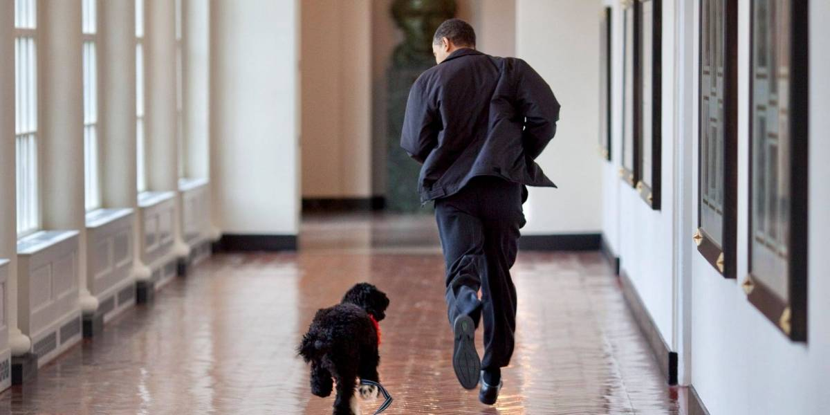 Muere el perro de la familia Obama