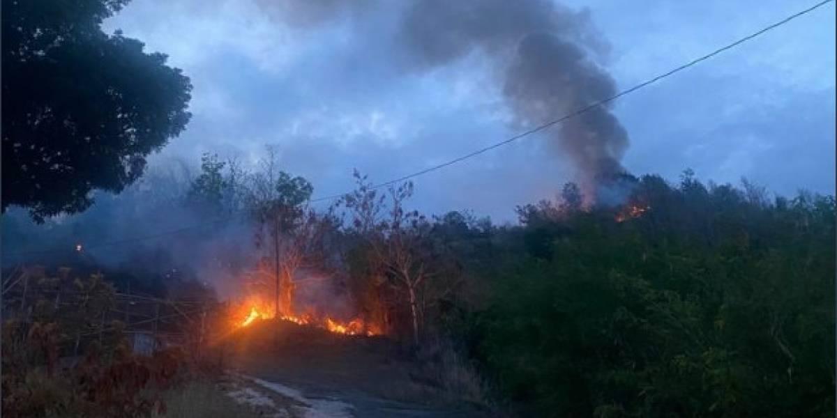 Guardia Nacional atenderá fuego forestal en Gurabo
