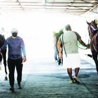 Hipódromo Camarero: una máquina de dinero que corre con caballos lastimados y maltratados