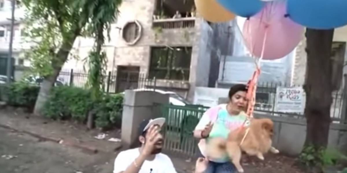 Youtuber es detenido por atar a su perro a globos de hidrógeno y grabar el hecho