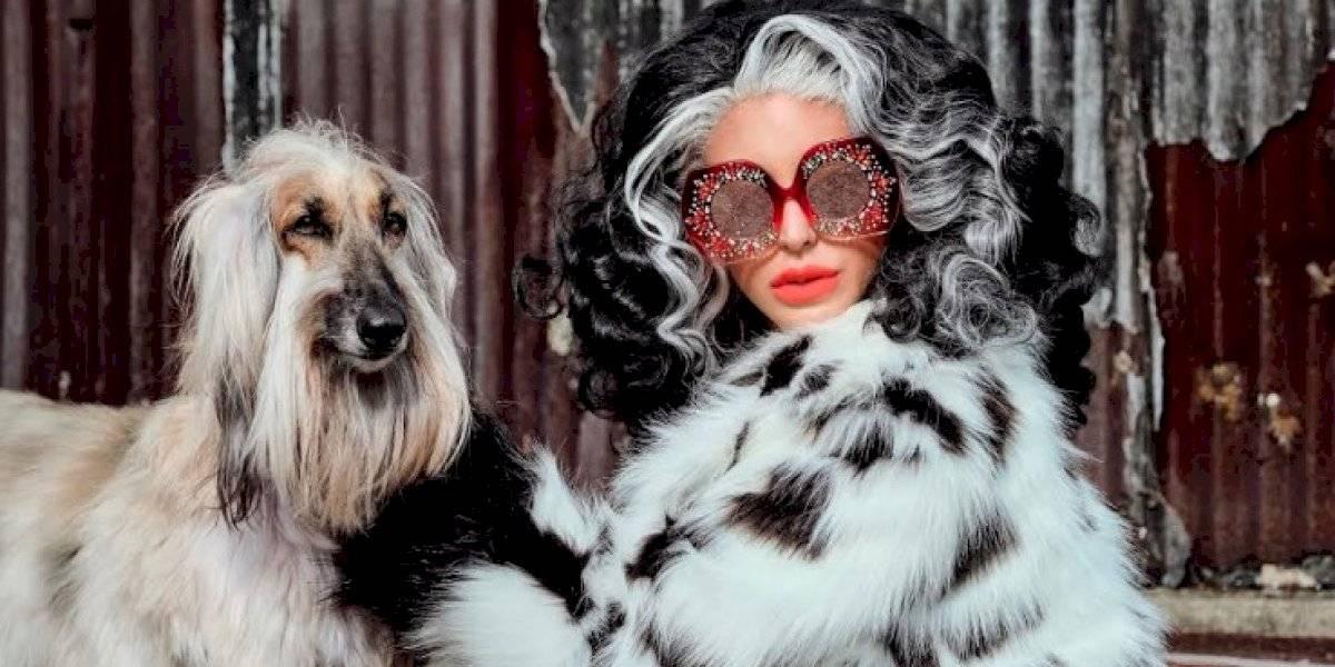 """Miss Gala se transforma en """"Cruella"""" y presenta nueva colección de gafas inspiradas en la famosa villana"""