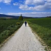 Peregrinos vuelven al Camino de Santiago tras restricciones