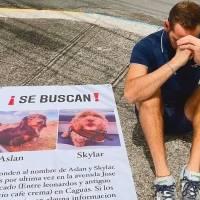 Hombre recupera sus perros tras pedir ayuda en las redes para encontrarlos