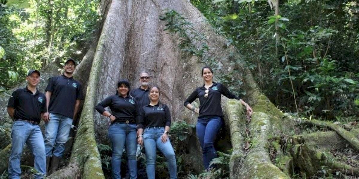 Apuestan a la siembra de 5 mil árboles para rescatar el ambiente