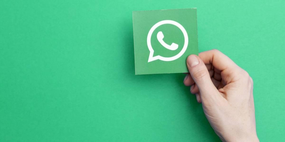 WhatsApp escucha las plegarias y al fin va a estrenan buscador de stickers