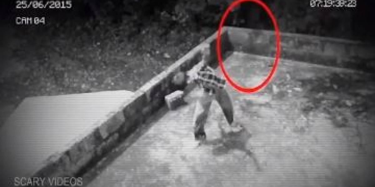 Revelan el espeluznante video en el que un fantasma ataca a un niño