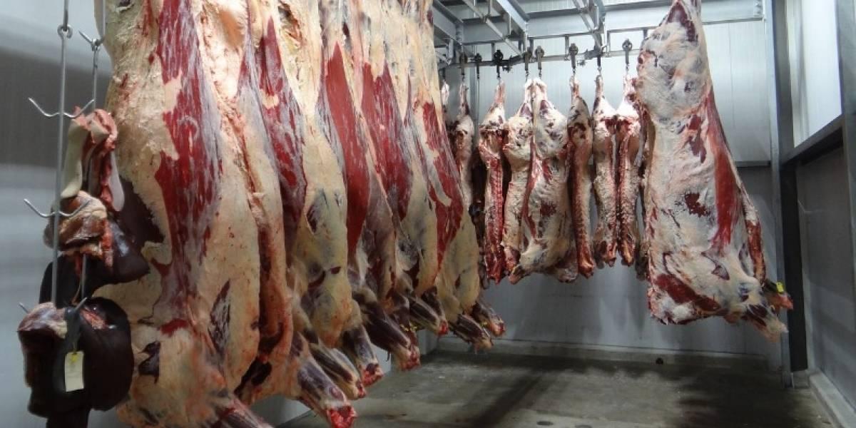 DACO confirma alza de hasta 120 por ciento en el precio de las carnes frescas