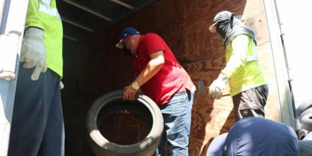 Municipio de Camuy recoge 15 mil neumáticos