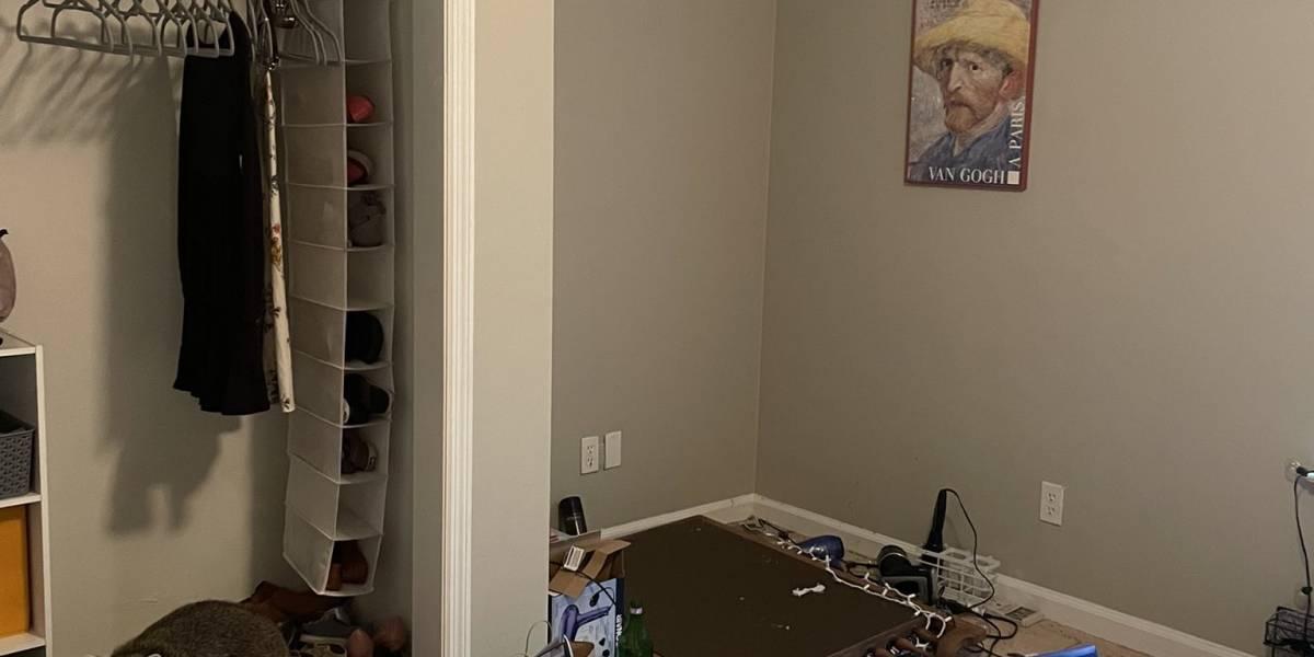 Joven llega a su casa tras viaje y descubre que familia de mapaches invadió su pieza: las fotos son virales