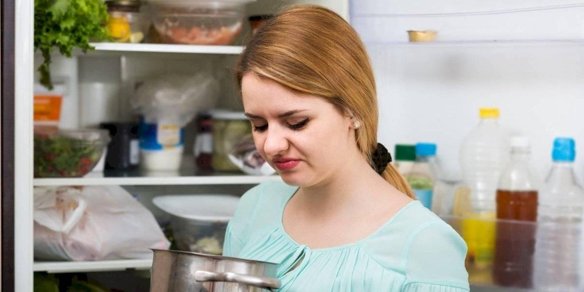 ¿Apagones? Mantén refrigerados tus alimentos por más tiempo utilizando bolsitas con hielo