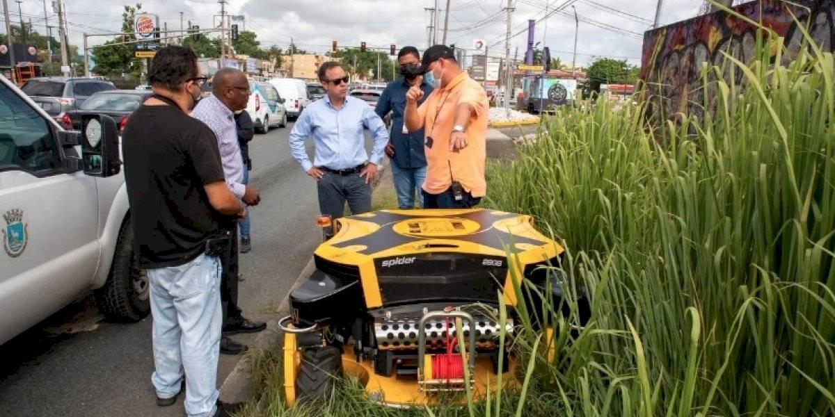 Municipio de San Juan inicia nuevo plan de mantenimiento para áreas verdes