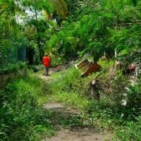 Rezagadas las comunidades pobres en la vacunación contra el COVID-19