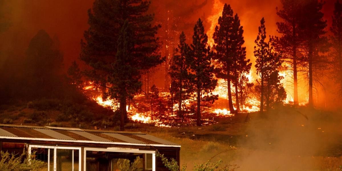 Equipos de empresa eléctrica provocarían incendios forestales en Estados Unidos