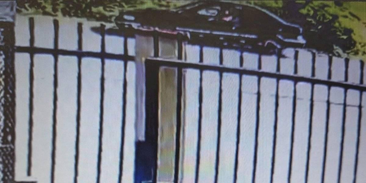 Buscan identificar a conductor que se le imputa matar a un hombre en Vega Baja