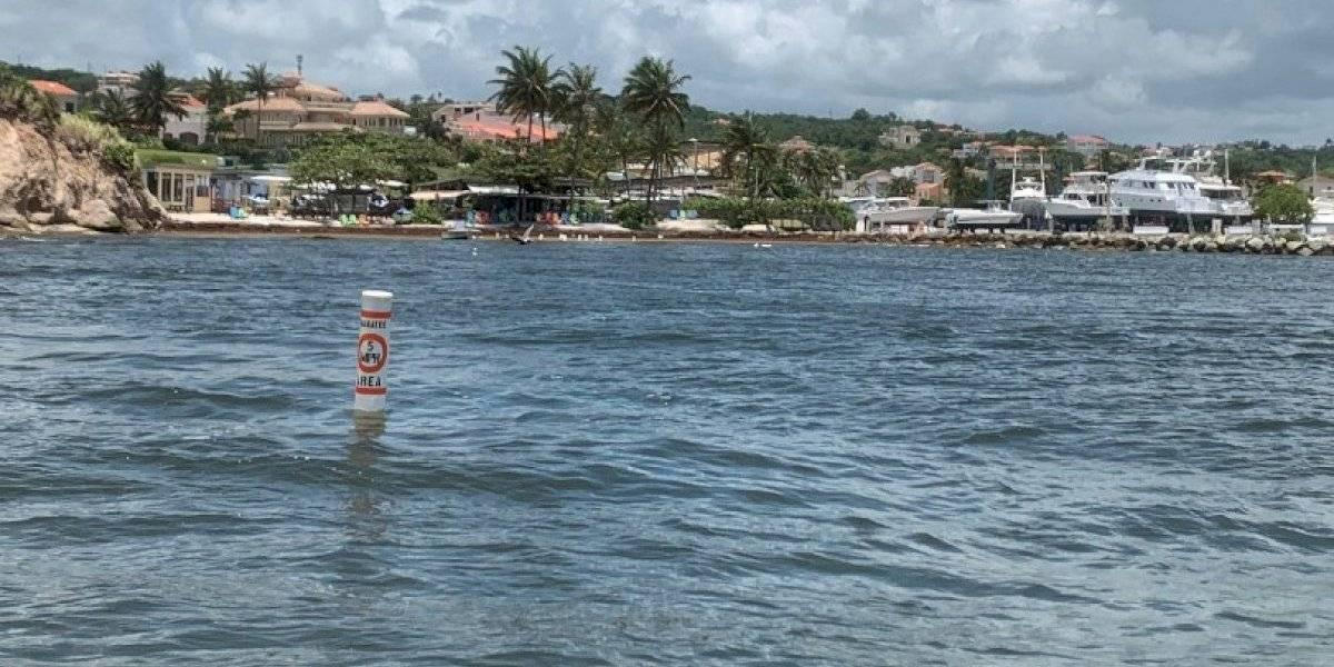 Colocan boyas en Punta Santiago para proteger a manatíes
