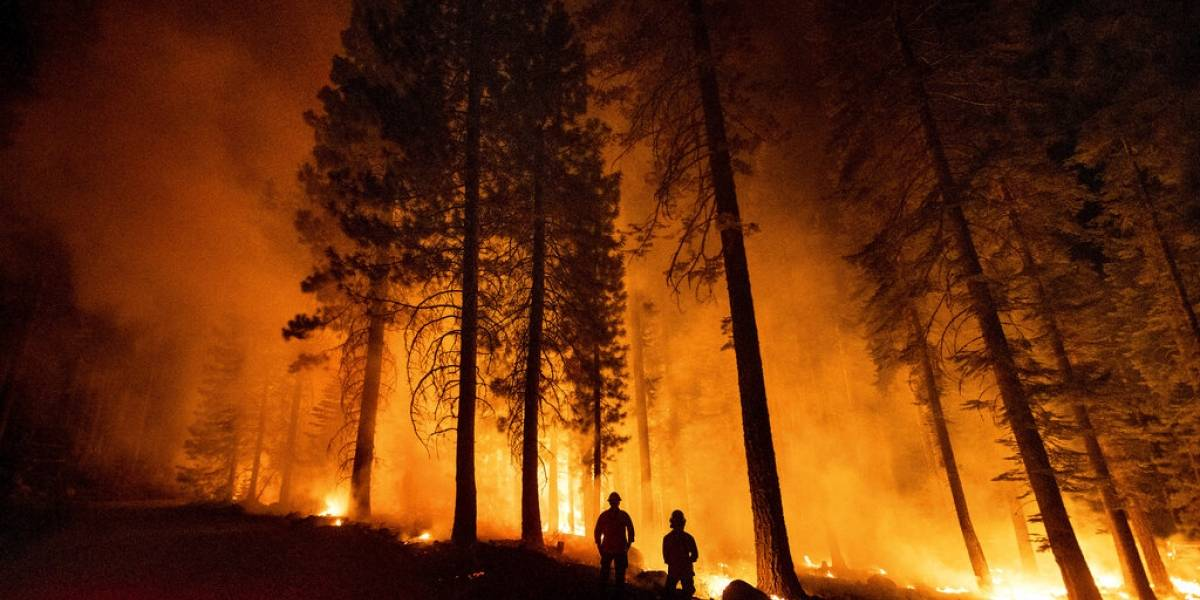 Bomberos logran avances en la lucha contra incendios en Estados Unidos