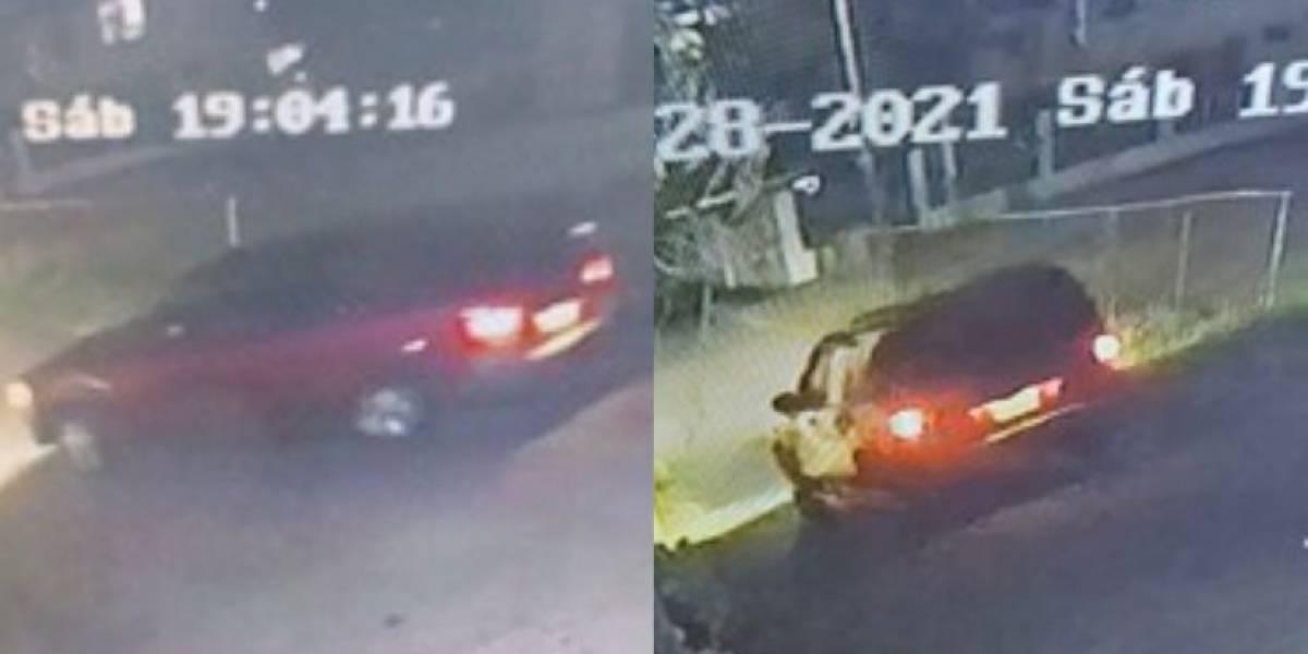 Buscan vehículo que atropelló fatalmente a empleado municipal de Vega Alta