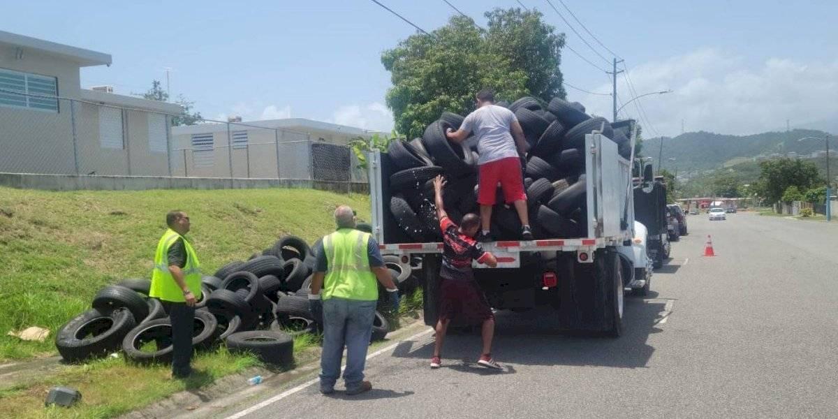 Brigadas municipales de Fajardo recogen sobre 1,400 neumáticos
