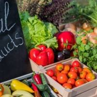 Wyndham Palmas Beach Resort celebra el primer Palmas Farmers Market